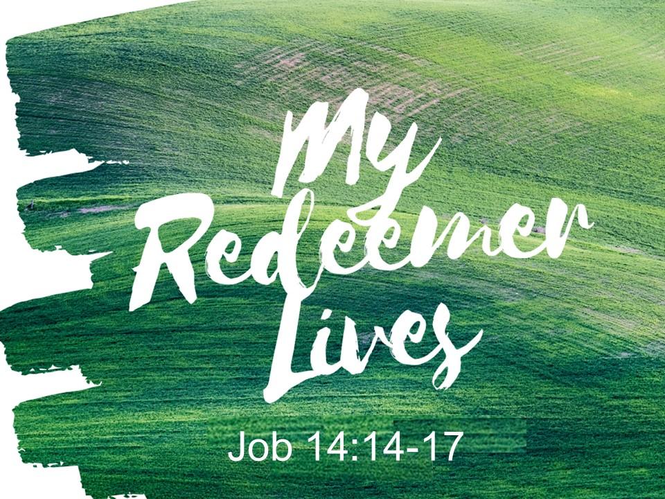 """""""My Redeemer Lives"""""""